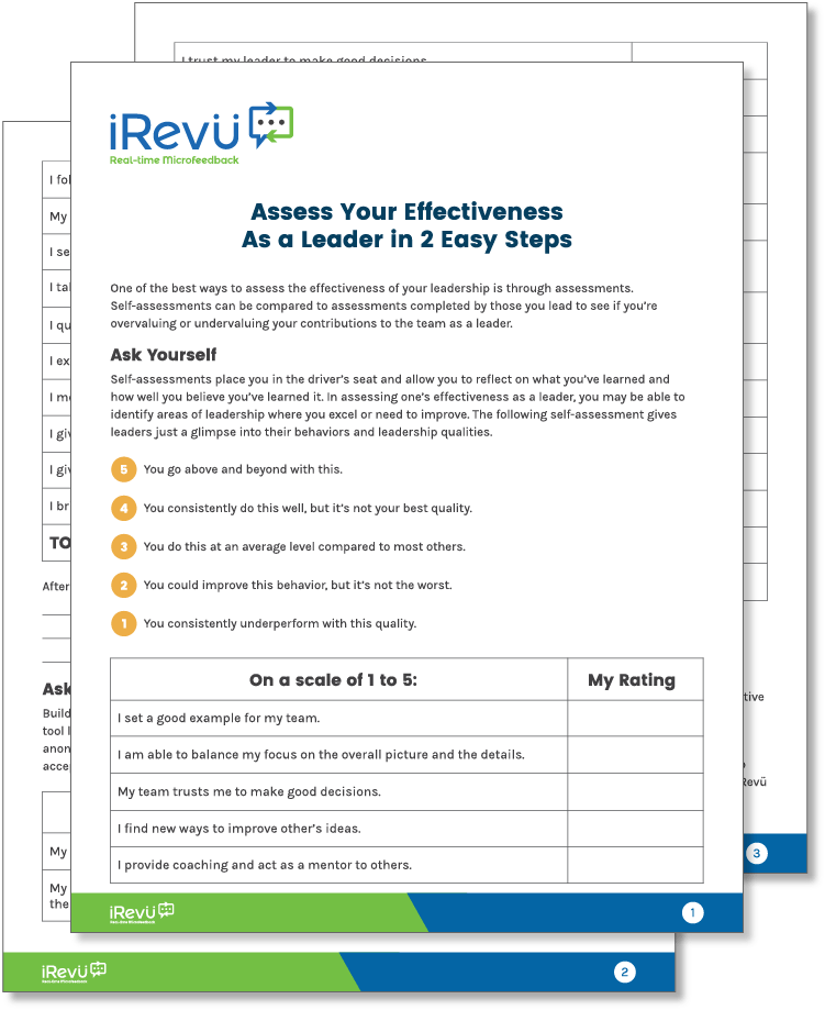 Leadership Style Assessment Guide and Printable | iRevü